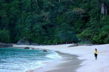 pantai teluk hijau banyuwangi - green bay