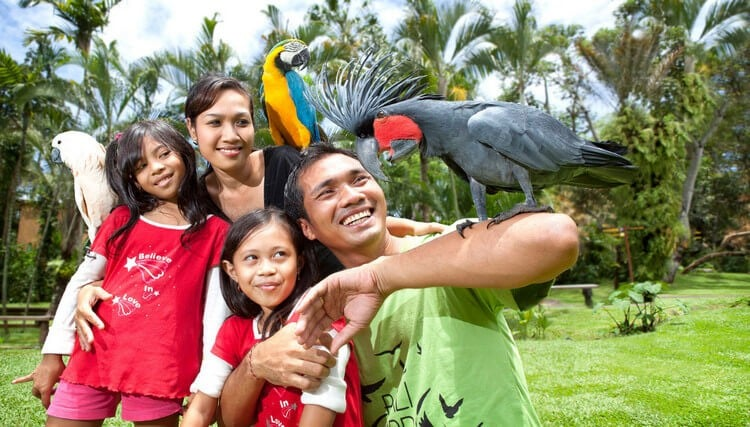 suasana bali bird park