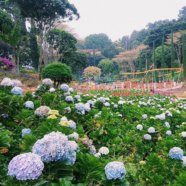 taman selekta - tempat wisata di Malang