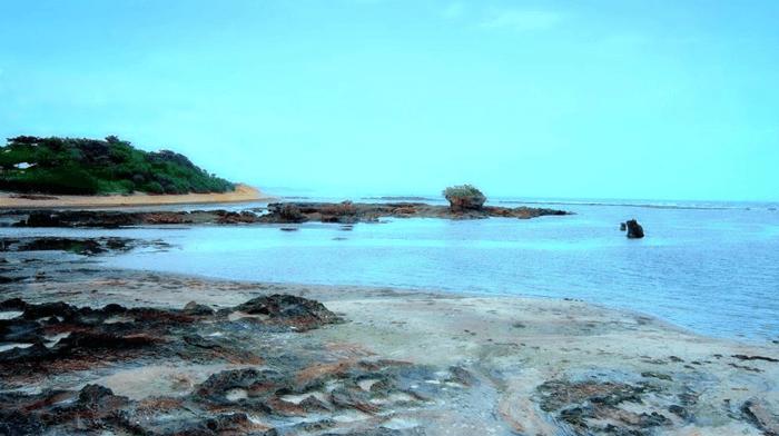 Zone Karang Pantai Sayang Heulang