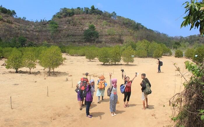 wisata mangrove CMC