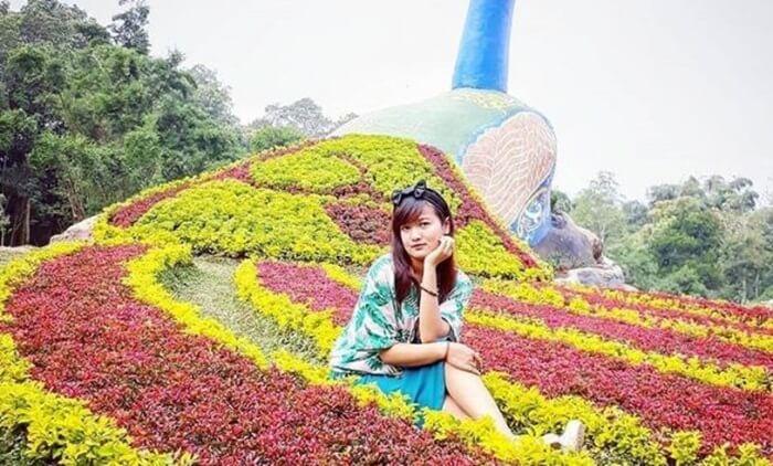 Legok Madu, taman bunga indah di area wisata bandungan