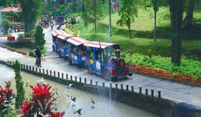 kereta mini taman kyai langgeng untuk menjelajah sekitar taman yang luas ini