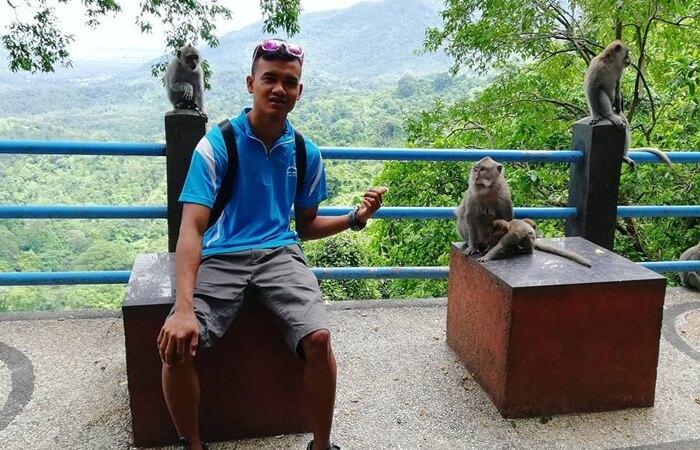 monyet ekor panjang, salahs atu daya tarik wisata di taman wisata pusuk sembalun