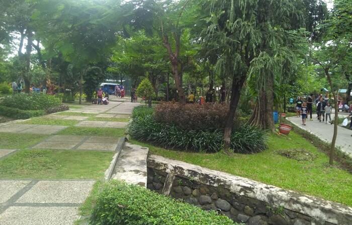 suasana rindang dan sejuk penuh pepohonan hijau di Kebun Bibit Wonorejo