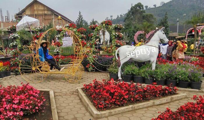 Kreta kuda berbunga taman begonia, salash satu spot foto favorit pengunjung