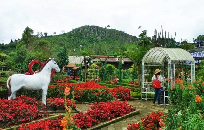 Taman Begonia, Taman Bunga Romantis yang Bikin Lupa Mantan