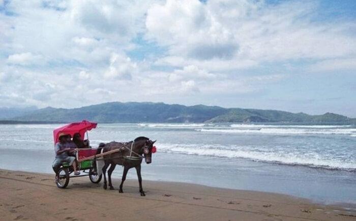 Delman wisata pantai teleng ria, yang bsia digunakan pengunjung untuk menjelajah pantai indah ini.