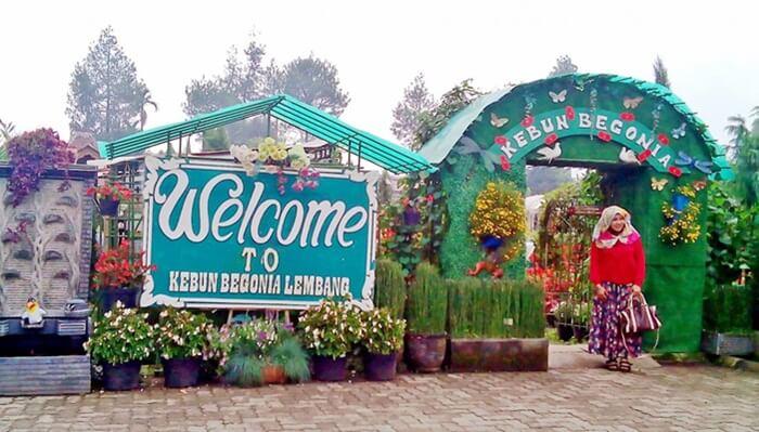 gerbang masuk taman begonia didesain indah dengan hiasan bunga hidup