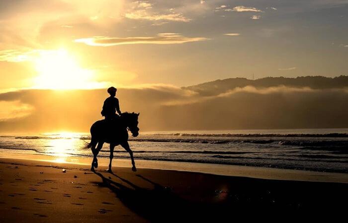 Sunrise Pantai teleng ria memebrikan pemandangan yang laur biasa ketika surya tenggelam di cakrawala barat.