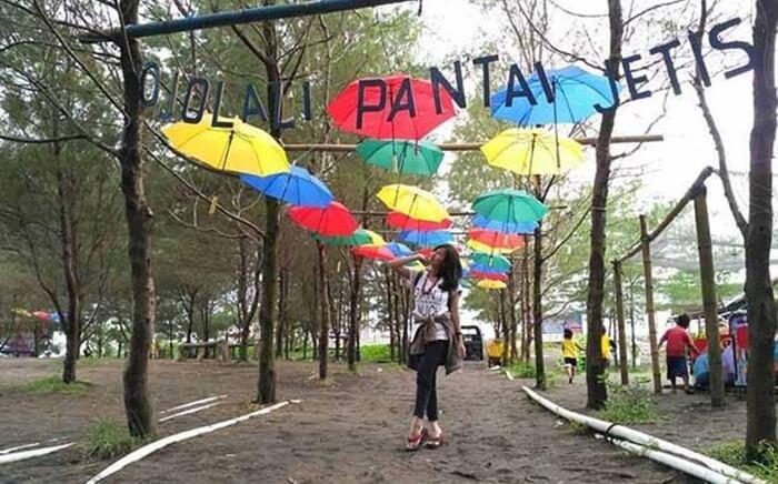 taman payung dibangun di dalam hutan pinus panta jetis