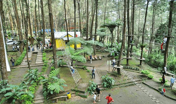 Pada outbound, pengunjung akan diajak untuk mengekplorasi alam taman wisata kopeng dengan beberapa tantangan seperti panjat tali, berjalan di jaring, trampolin jaring, spider jumper, hingga flying fox.
