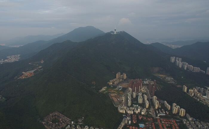 Tempat wisata di Shenzhen ini menawarkan pemandangan indah pohon-pohon cemara yang berada di sepanjang jalan gunung ini