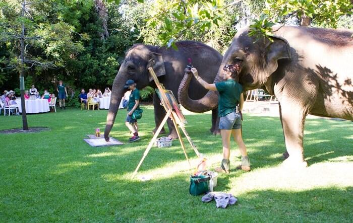 Kebun Binatang tempat wisata di Perth ini adalah taman zoologi seluas 41 hektar di Perth Selatan, Australia Barat.
