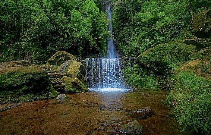 Air Terjun Parang Ijo bagaikan sebuah taman yang penuh tanaman hijau. Pemandangan yang tersaji dari atas bukit sangat sayang untuk dilewatkan.