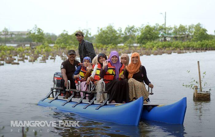 di tempat wisata pekalongan ini Pengunjung bisa melihat hutan bakau dari jarak dekat. Bahkan disini ada salah satu lorong mangrove yang disebut dengan lorong cinta.
