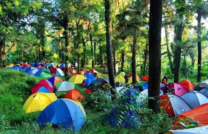 Jika camping di tempat wisata ambarawa ini, di pagi hari akan melihat beberapa kabut yang mengelilihin hutan ini.