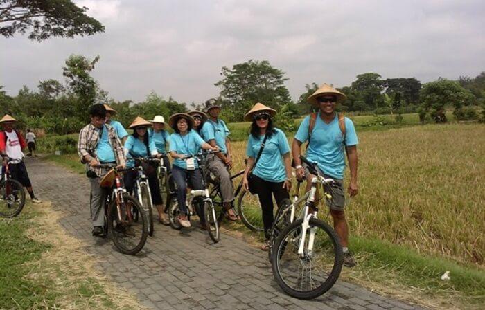 jelajah desa wisata Tembi bis ajuga dilakukand engan mengayuh sepeda di persawahan
