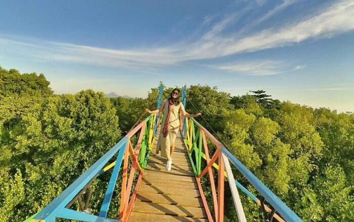 Keberadaan tempat wisata Singkawang berupa Hutan Mangrove, merupakan hasil jerih payah Kelompok Peduli Mangrove Surya Perdana Mandiri yang di pimpin oleh bapak Jumadi.