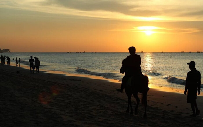 Dikarenakan pantai tempat wisata Sumenep ini luas, untuk megelilinginya pengunjung disediakan fasilitas kuda yang bisa disewa oleh pengunjung