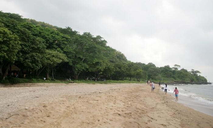 Pantai tempat wisata Situbondo ini memiliki pasirn putih, air lautnya juga jernih, ada batu karang dab rumput laut yang bertebaran