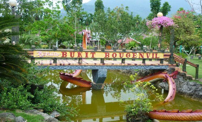 Sesuai dengan namanya, taman tempat wisata Singkawang ini didominasi dengan panorama bunga bougenville