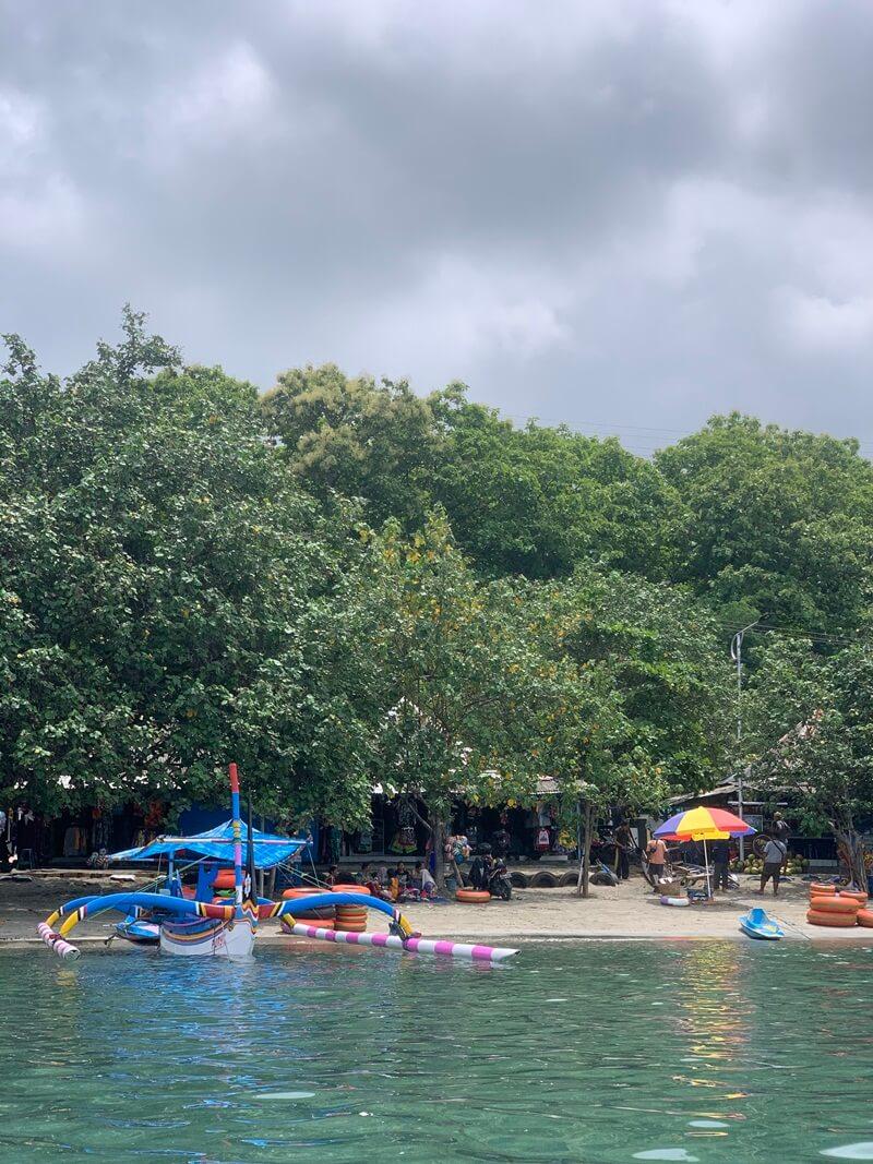 Rimbunnya Pepohonan Di Pantai Pasir Putih Situbondo