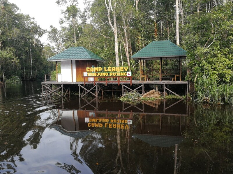 Camp Leakey Tanjung Puting