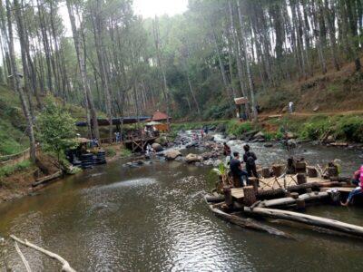 Kampung Singkur Pangalengan, Liburan Seru Di Tepi Sungai Kawasan Hutan Pinus