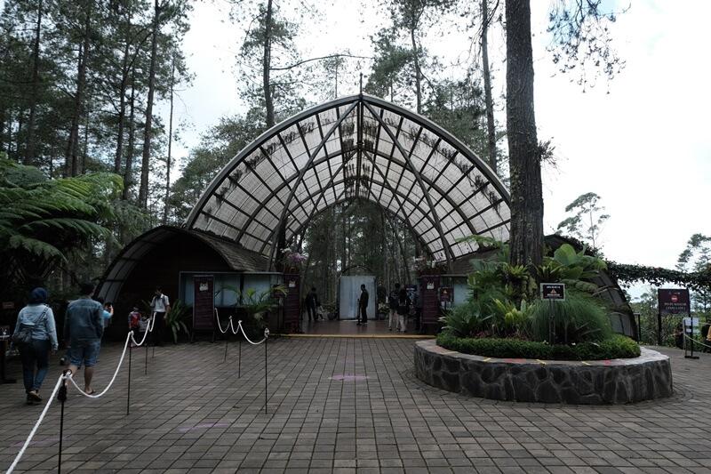 lokasi orchid forest lembang