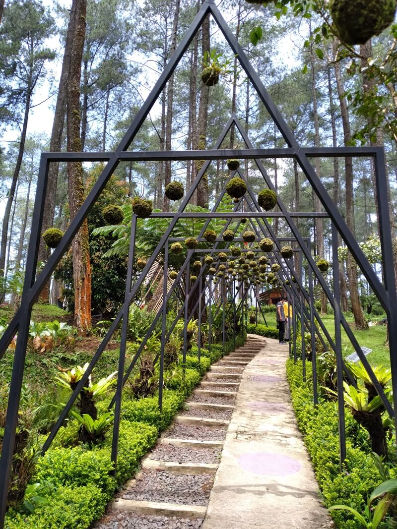 suasana di orchid forest lembang