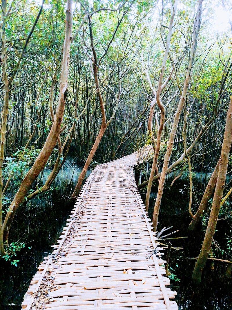 menyusuri kawasan hutan mangrove